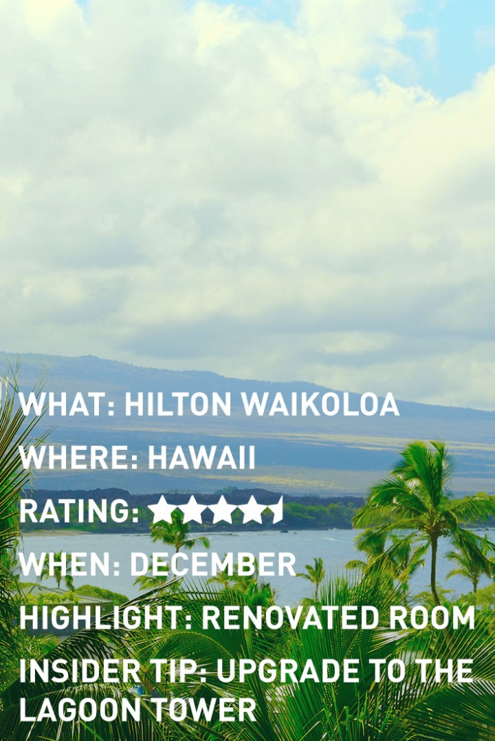 HAWAII HILTON INFOGRAPHIC