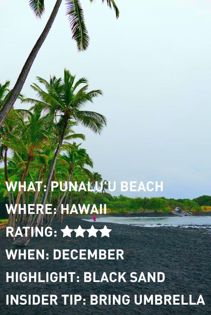 HAWAII PUNALUU BLACK SAND BEACH INFOGRAPHIC