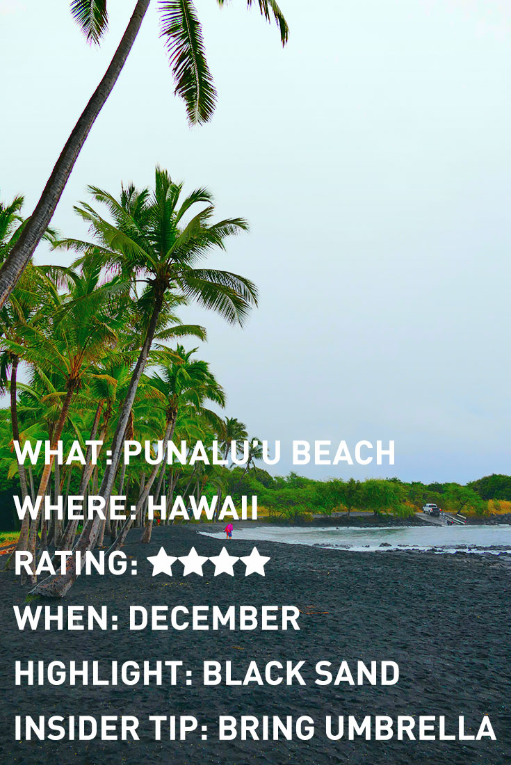 HAWAII PUNALUU BLACK SAND BEACH INFOGRAPHIC