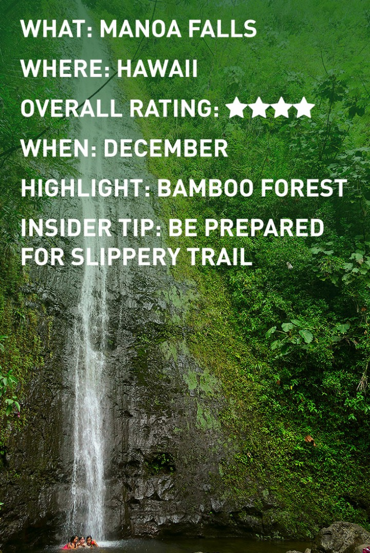HAWAII MANOA FALLS INFOGRAPHIC