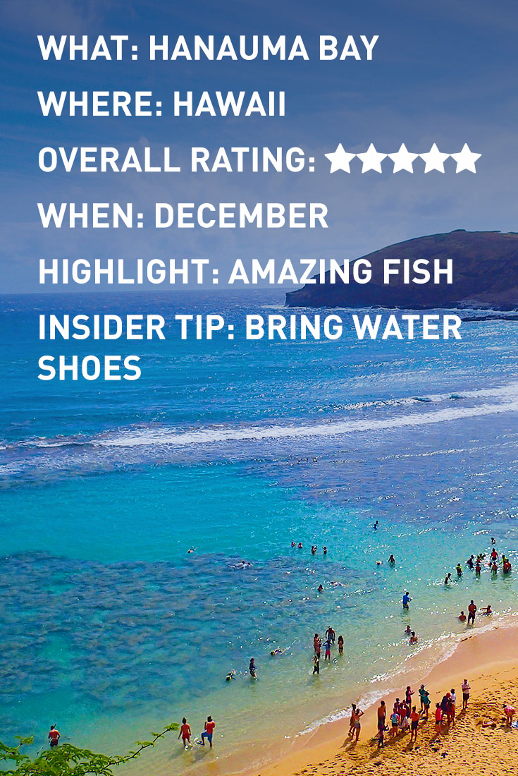 HAWAII HANAUMA BAY INFOGRAPHIC
