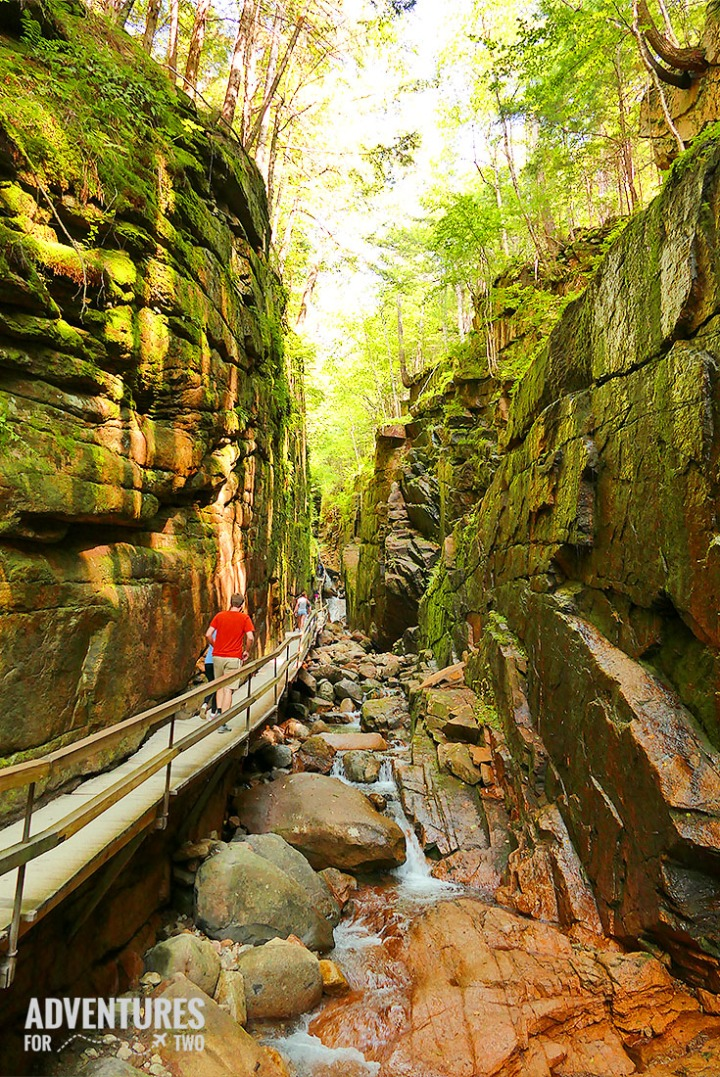 FLUME GORGE PIN