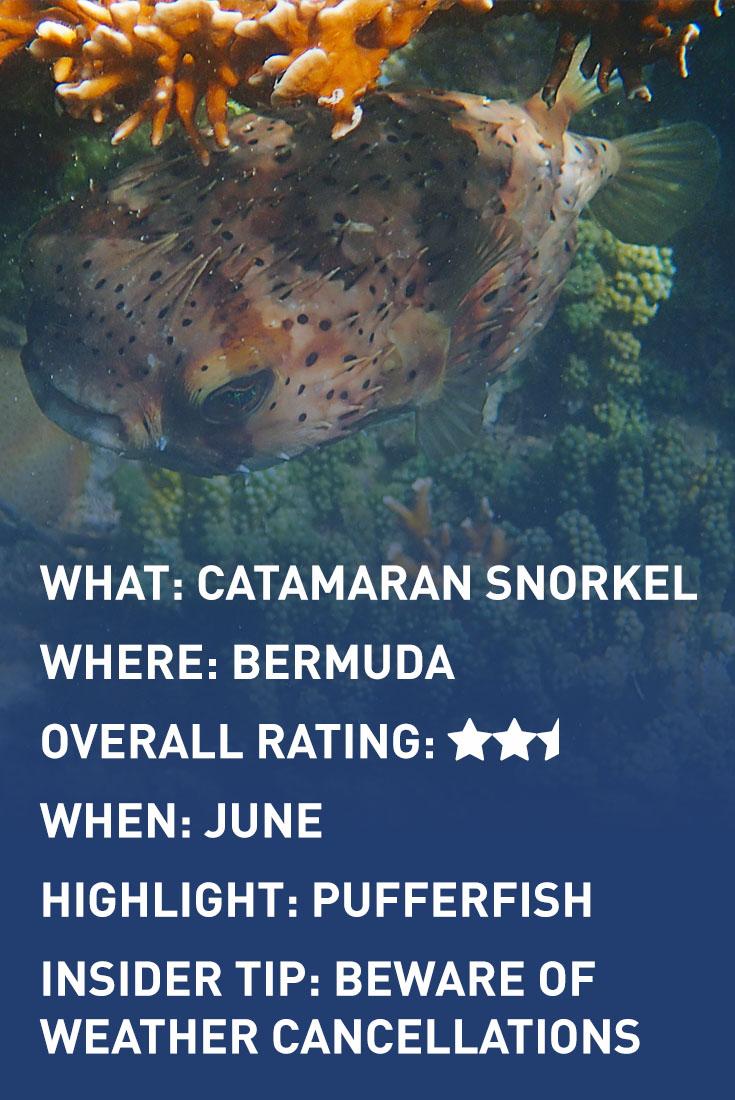 bermuda CATAMARAN SNORKEL infographic