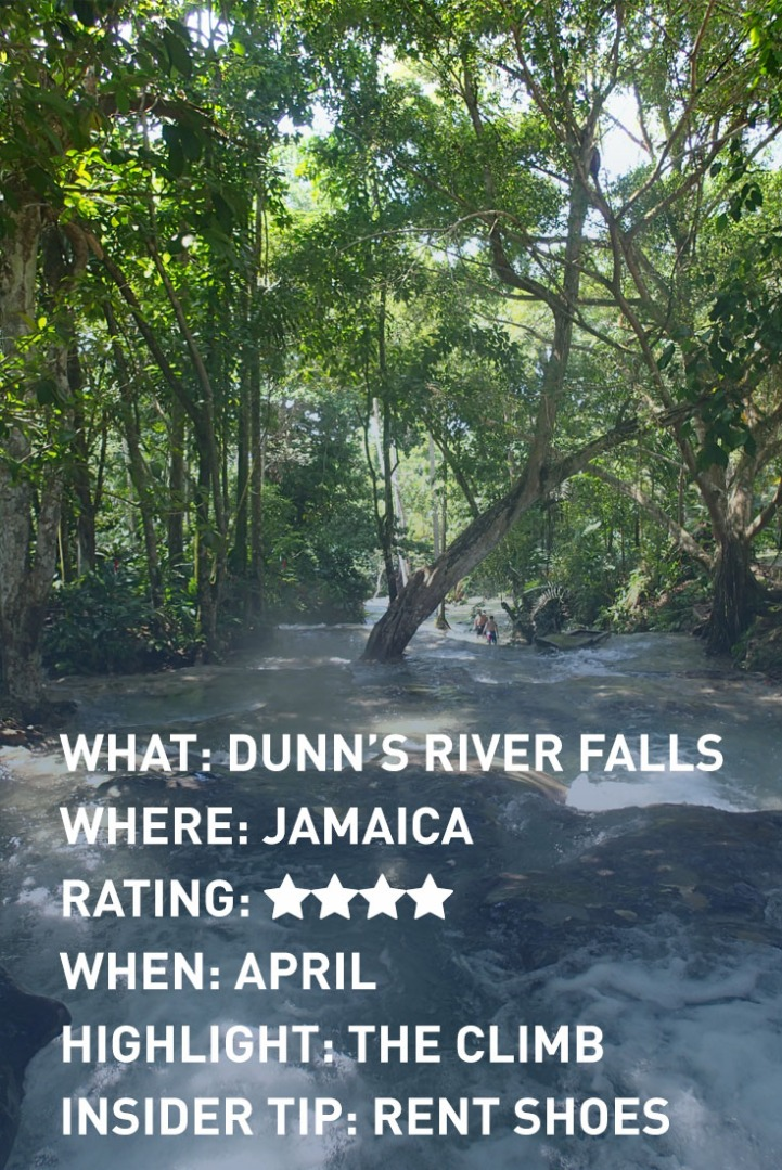 DUNNS RIVER FALLS infographic