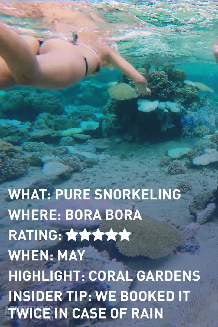bora-bora-pure-reef-2-infographic