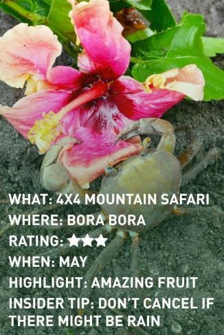 bora-bora-safari-infographic