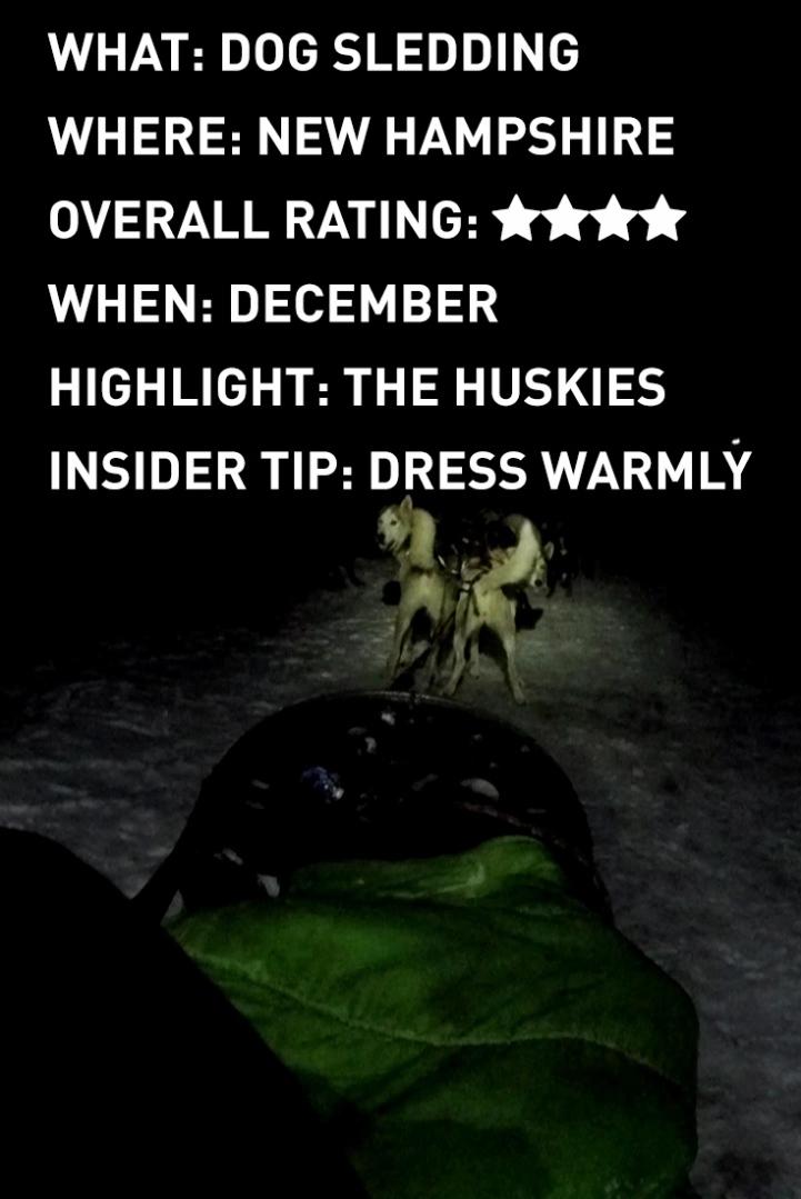 dog-sledding-infographic